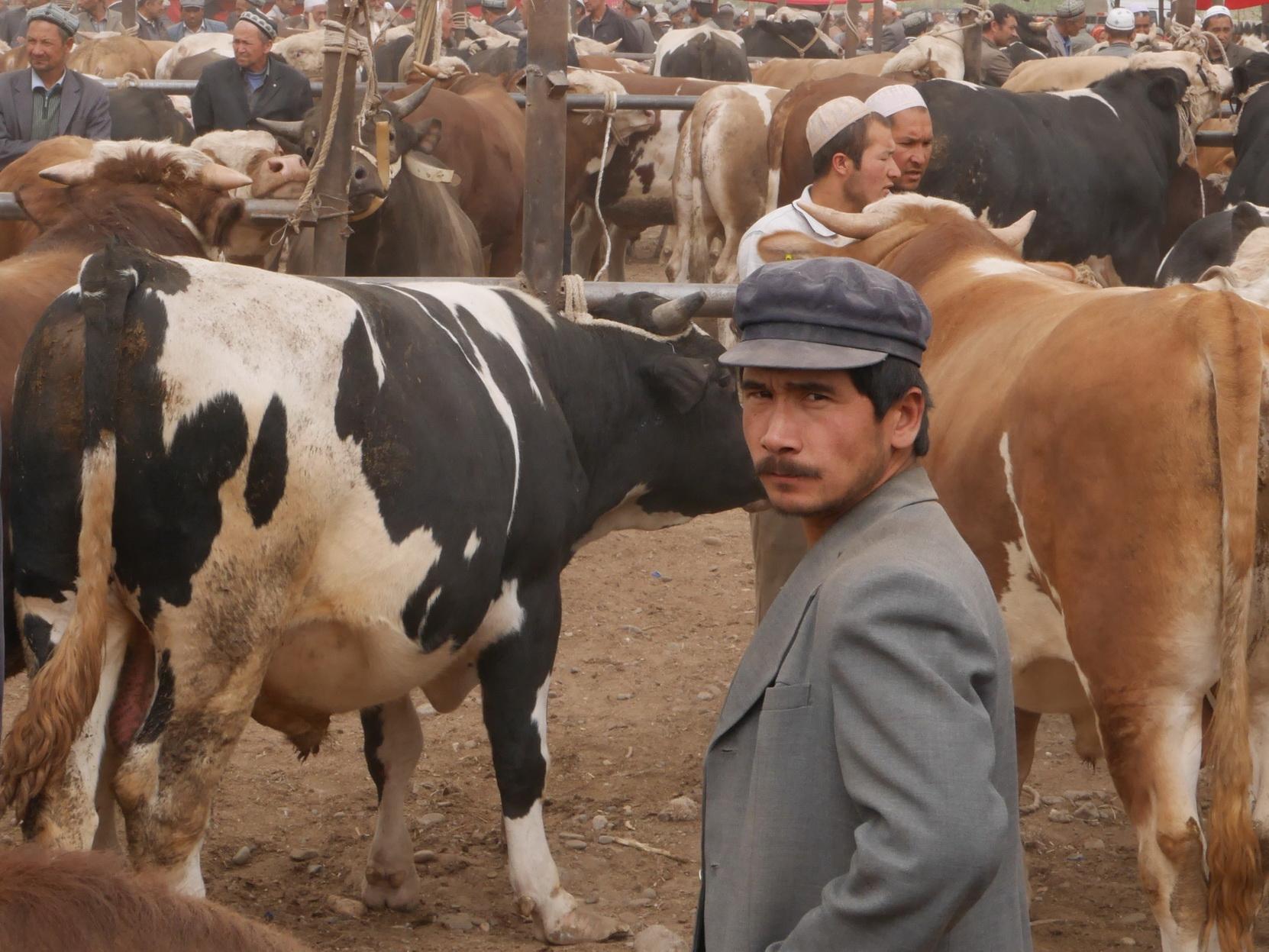 Xinjiang Life Stock Market_resize