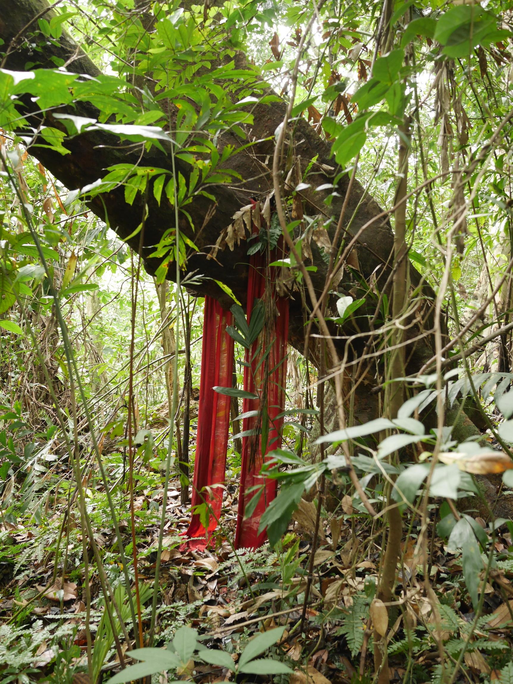 Bukit Batok_3