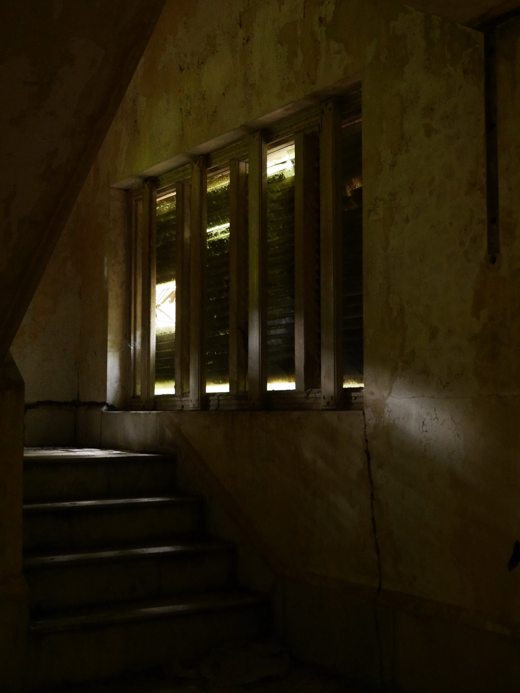 Istana Woodneuk_4