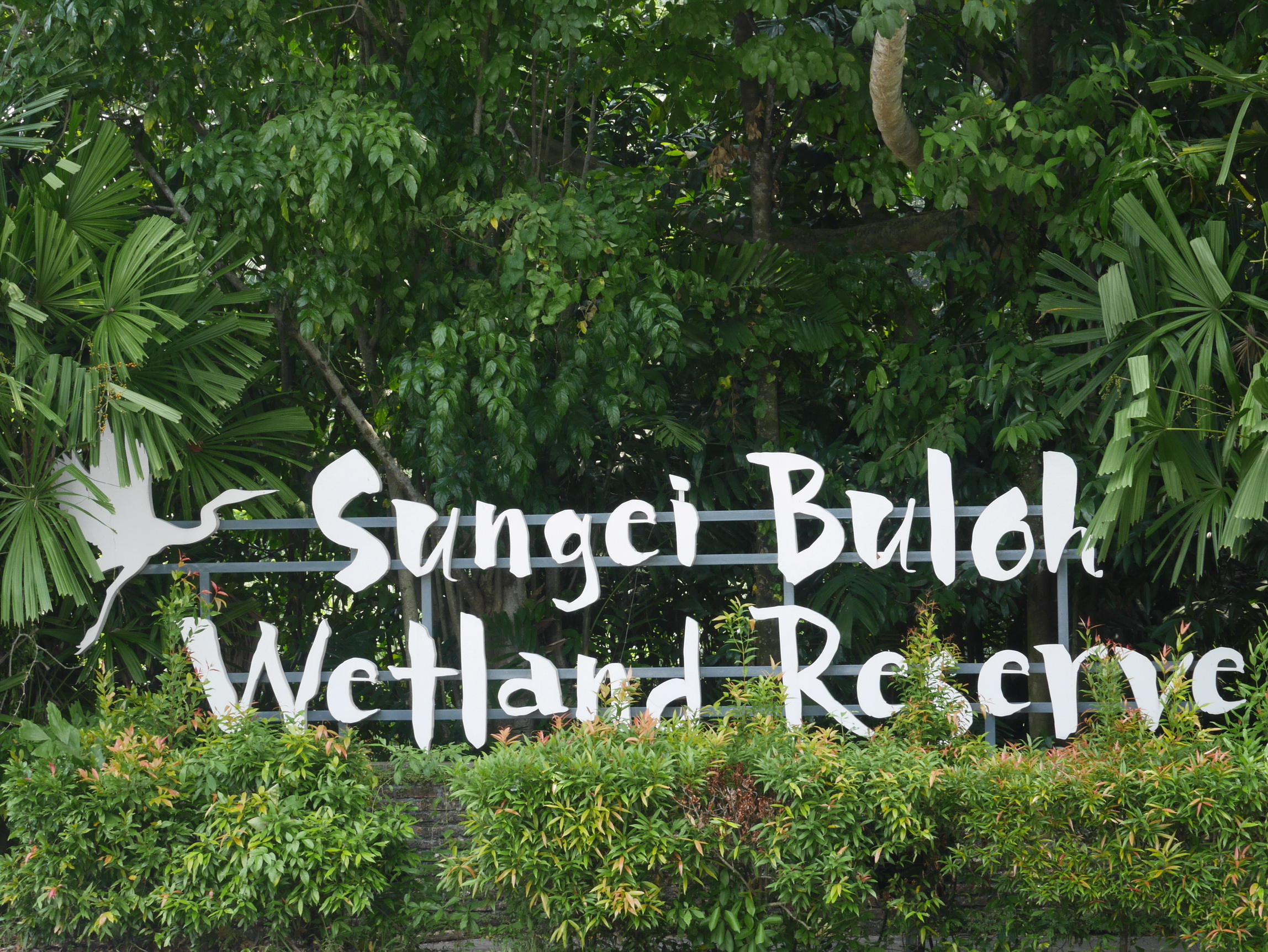 Sungei Buloh Wetlands_9